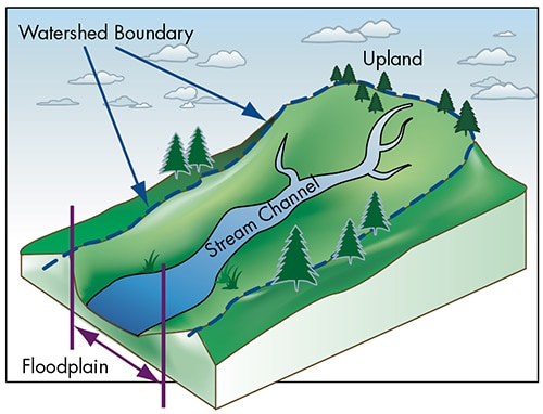 Image of a watershed.