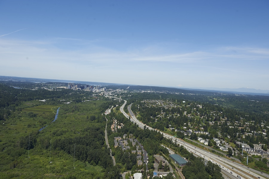 Mercer Creek is surrounded by natural riparian habitat. Image courtesy of John Tiscorina (2016), Bellevue, Washington.