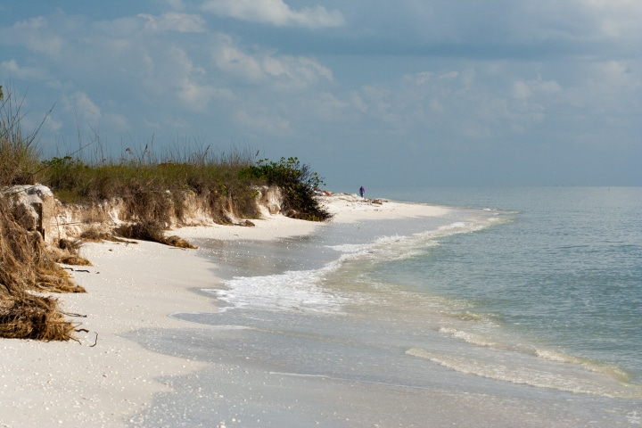 A person walks along a beach in Sanibel, FL. Image courtesy of David Hachen via the Flickr Creative Commons.